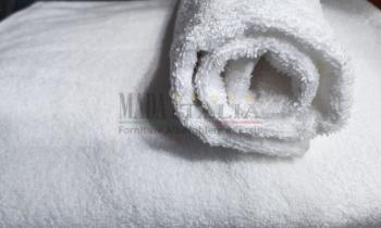 Vendita Asciugamani Spugna Plus 500 grammi Bianco