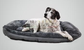 Vendita Cuccia Imbottita Reversibile Cani Gatti